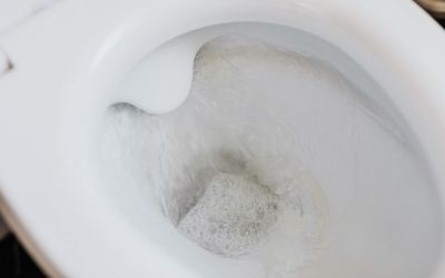 La campagne « Flushe pas tes ordures » dans le cadre de Juin mois de l'eau et de notre 10e anniversaire